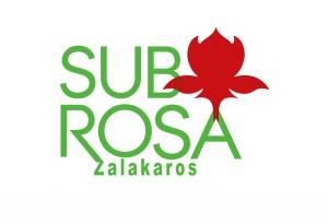 11 300x205 Sub Rosa Apartman   Panzió