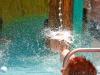thumbs megnyilt vizipok 11 Vizipók Csodapók vizi gyermekvilág a zalakarosi strandon aktualis hirek