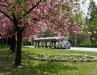 thumbs zalakaros tavasz 0015 Tavasz ébredés   tavaszköszöntő   tavaszváró képek Zalakaros aktualis hirek